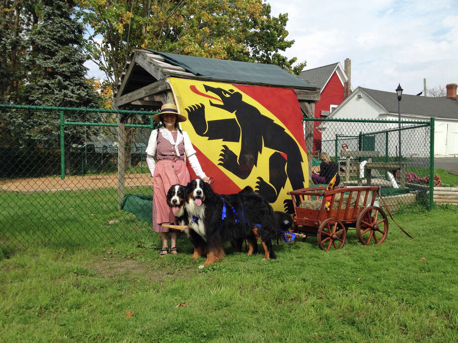 Lori Friedli with her two Bernese Mountain Dogs Charly and Nettie in front of the Berner Switzerland flag. Photo: Contributed / Contributed Photo / Greenwich Time Contributed