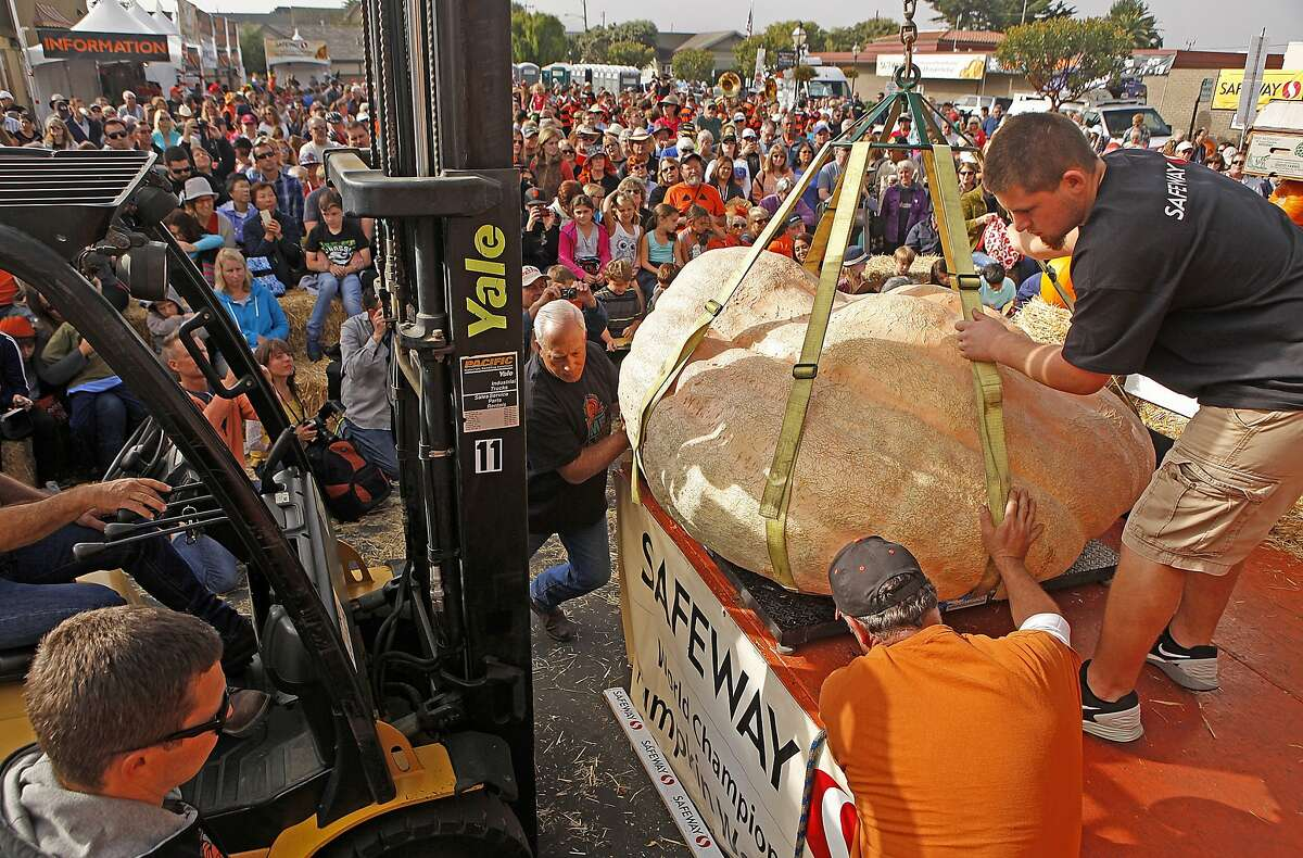 Joey Lema of San Mateo, right, and other festival workers guide a giant pumpkin onto a scale for weighing during the 42nd annual Half-moon Bay Championship Pumpkin Weigh-off Monday morning October 12, 2015 in Halfmoon Bay, Calif.