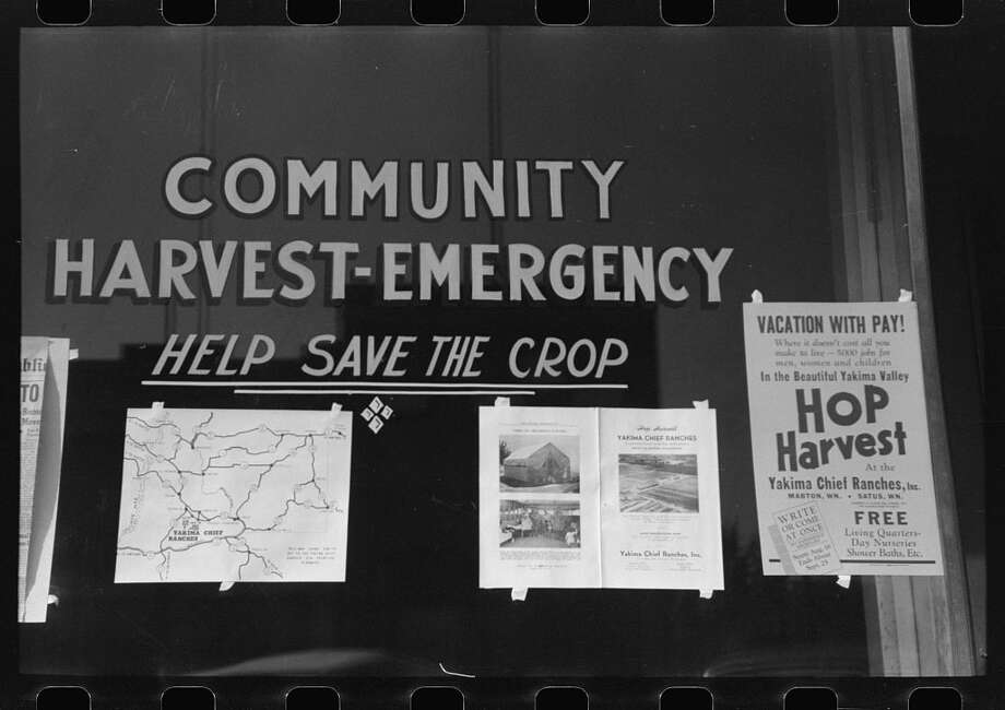 Original caption: Sign at office of Community Harvest Emergency committee, Yakima, Washington. Photo by Russell Lee, September 1941. Photo: Farm Security Administration -- Office Of War Information Collection