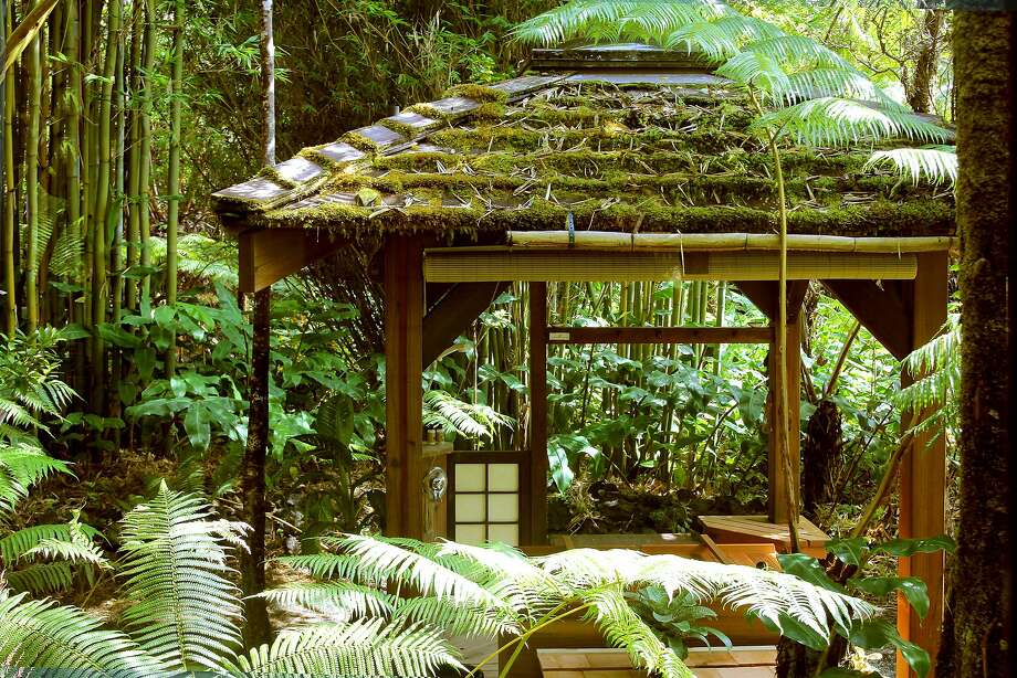 Volcano Rainforest Retreat. Photo: WowiZowi Photography