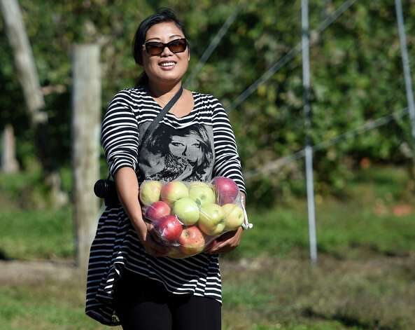 Young Dinglu carries her bounty after picking apples Monday afternoon, Oct. 12, 2015, at Bowman Orchards in Rexford, N.Y. (Skip Dickstein/Times Union) Photo: SKIP DICKSTEIN / 10033728A
