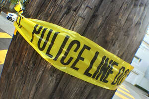 Human skull found near Los Gatos - Photo