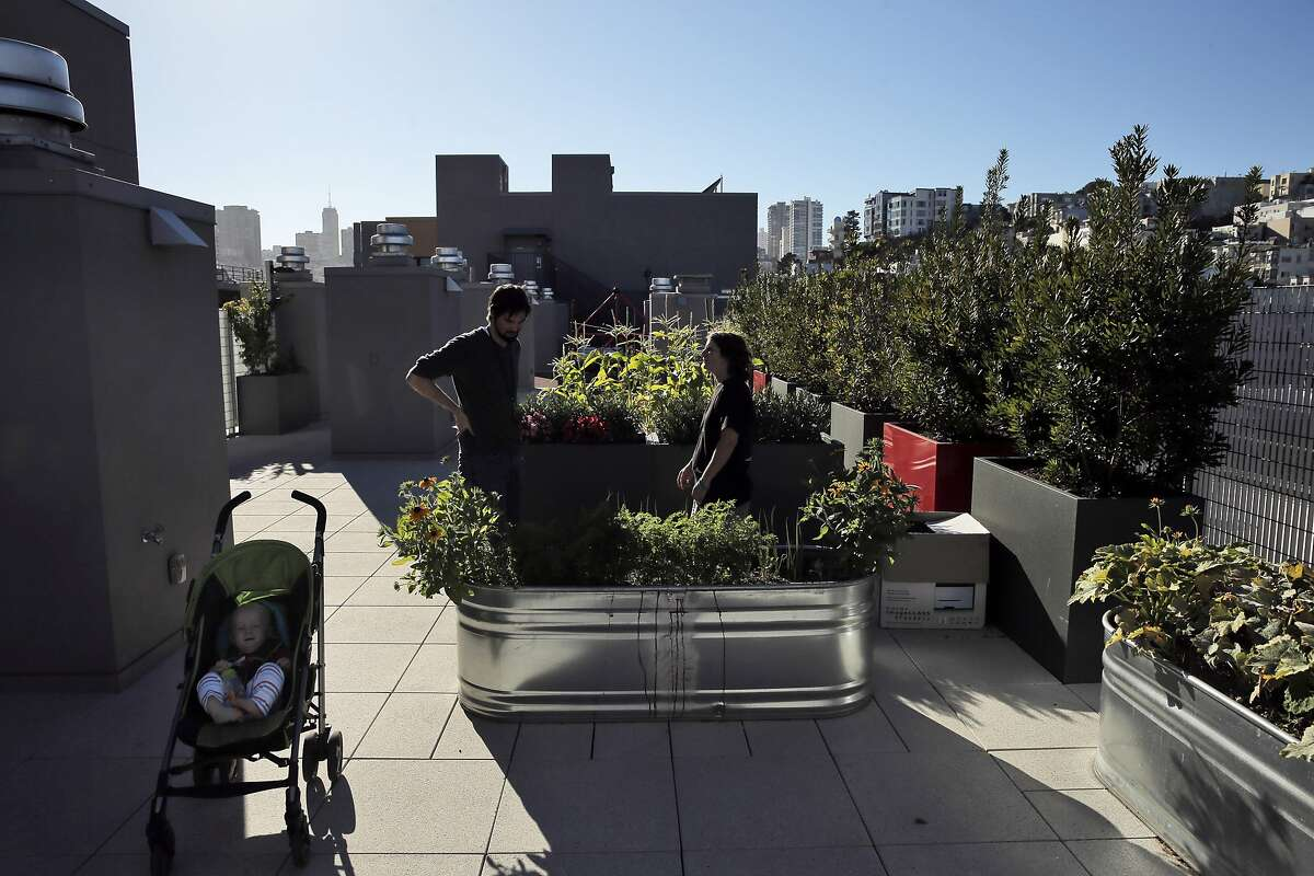 Liam Williams sits in his stroller as his mom, Danielle Williams, right, and Kyle Golden, Intensive Case Manager for the CCDC, tend to the rooftop tenant garden at the Sansom Broadway Apartments in San Francisco, Calif., on Monday, October 12, 2015. The Chinatown Community Development Center was built on surplus city property and Proposition K on the November ballot would make city departments to come up with a list of unused property and allocate it for housing needs.