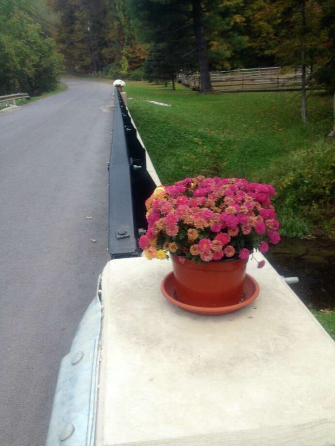 These flower pots have cheered drivers passing over the new bridge on Riverview Road in Gaylordsville. Placed there by an unknown benefactor, the pots have been replaced when taken and watered by Anna Menard. Photo: / Susan Tuz, Staff Writer