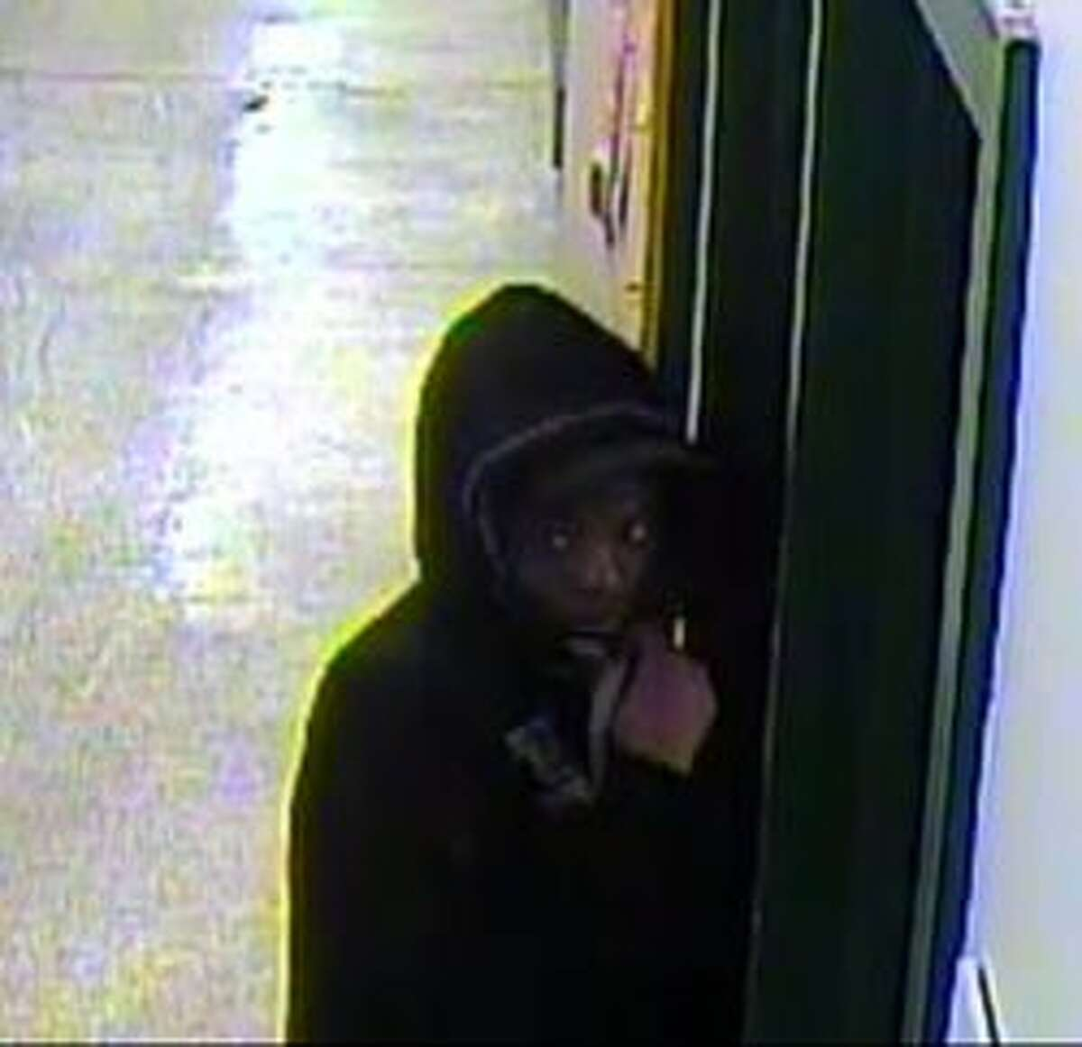 Surveillance video of the suspected dognappers.