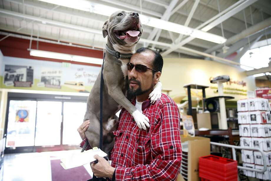 Veteran and Navigation Center resident Enrique Gonzalez holds his dog Hops after it got scared by another dog at Pet Food Express in San Francisco, Calif., on Thursday, October 8, 2015. Photo: Scott Strazzante, The Chronicle