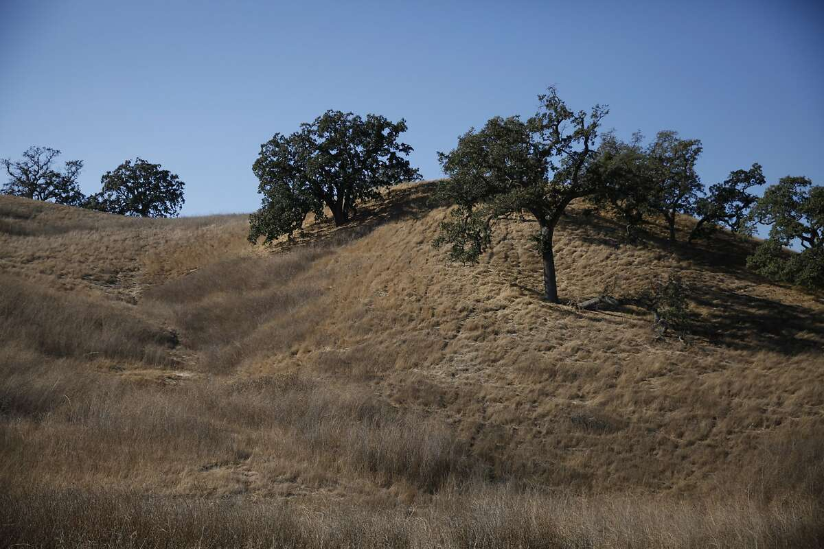 These dry hills are across the street from the homes in the Saddleback at Blackhawk gated community, home to some of the worst water-wasters in the east bay, in Danville, Calif., on Friday, October 16, 2015.