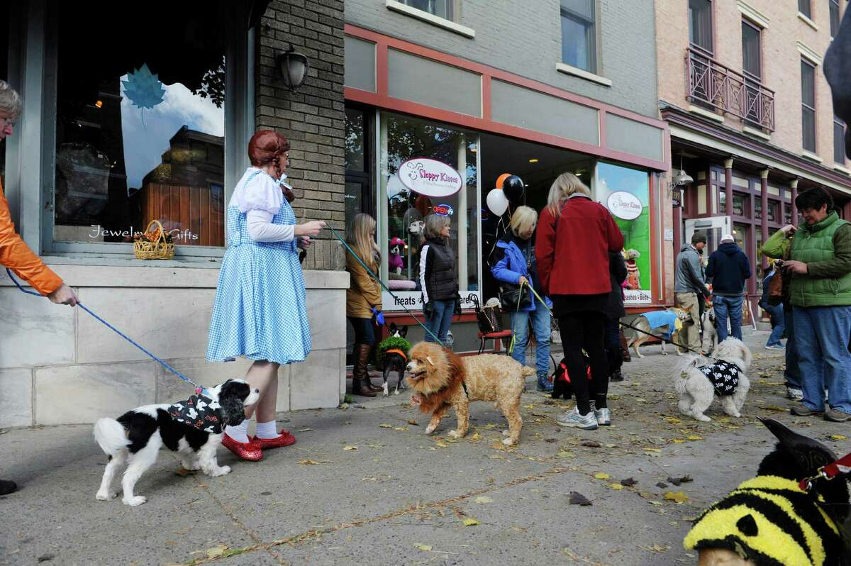 Dogs in costumes and their owners, some also in costumes gather for the Sloppy Kisses of Saratoga costume Howl-O-Ween Parade on Sunday, Oct. 18, 2015, in Saratoga Springs, N.Y. This was the tenth year that the dog boutique held the costume parade and contest for dogs and their owners. (Paul Buckowski / Times Union)