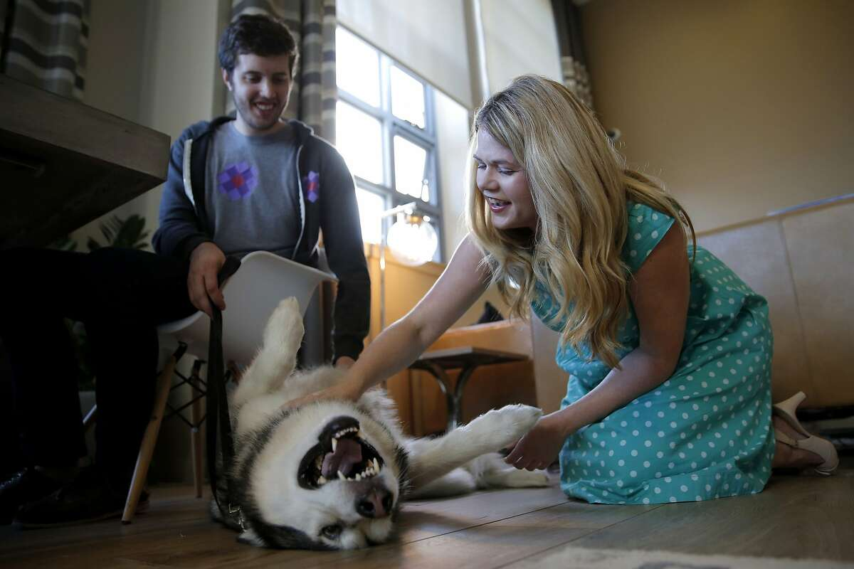 Alison Ettel, CEO and founder of TreatWell, pets Kyra as her owner Rick Harrison looks on during a consultation in San Francisco, California, on Sunday, Oct. 18, 2015.
