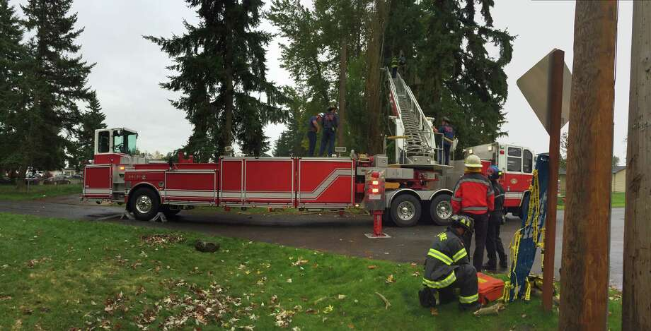 Kent firefighters rescued a man from a tree Sunday morning after he was injured while topping a tree. Photo: Courtesy Kent Fire Department