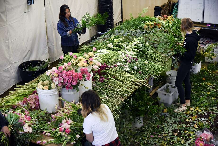 Designers work putting together the days bouquets at the Farmgirl Flowers stall at the SF Flower Mart in San Francisco, CA Thursday, October 15, 2015. Photo: Michael Short, Special To The Chronicle