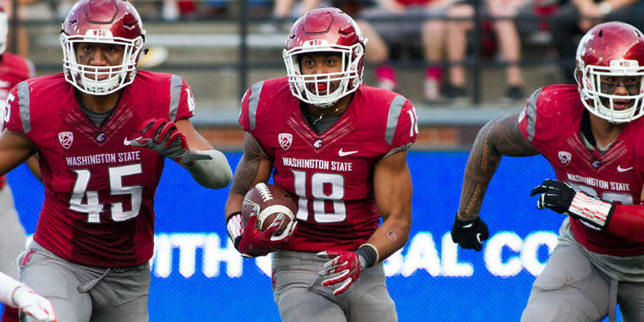 WSU safety Shalom Luani has made in immediate impact in the Cougars' secondary during his first season on the Palouse. (Photo courtesy of Washington State Athletics)
