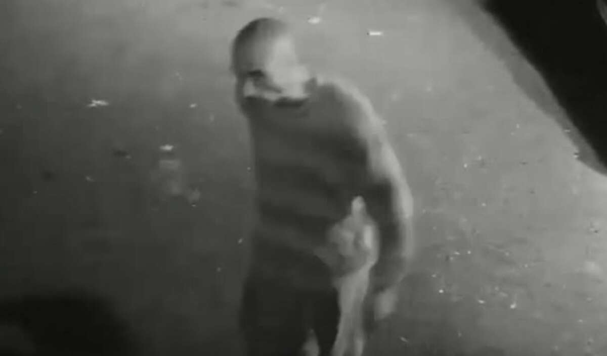 Stamford Police are trying to identify a man caught on video breaking into vehicles on Anderson Street in Stamford on Oct. 15, 2015.
