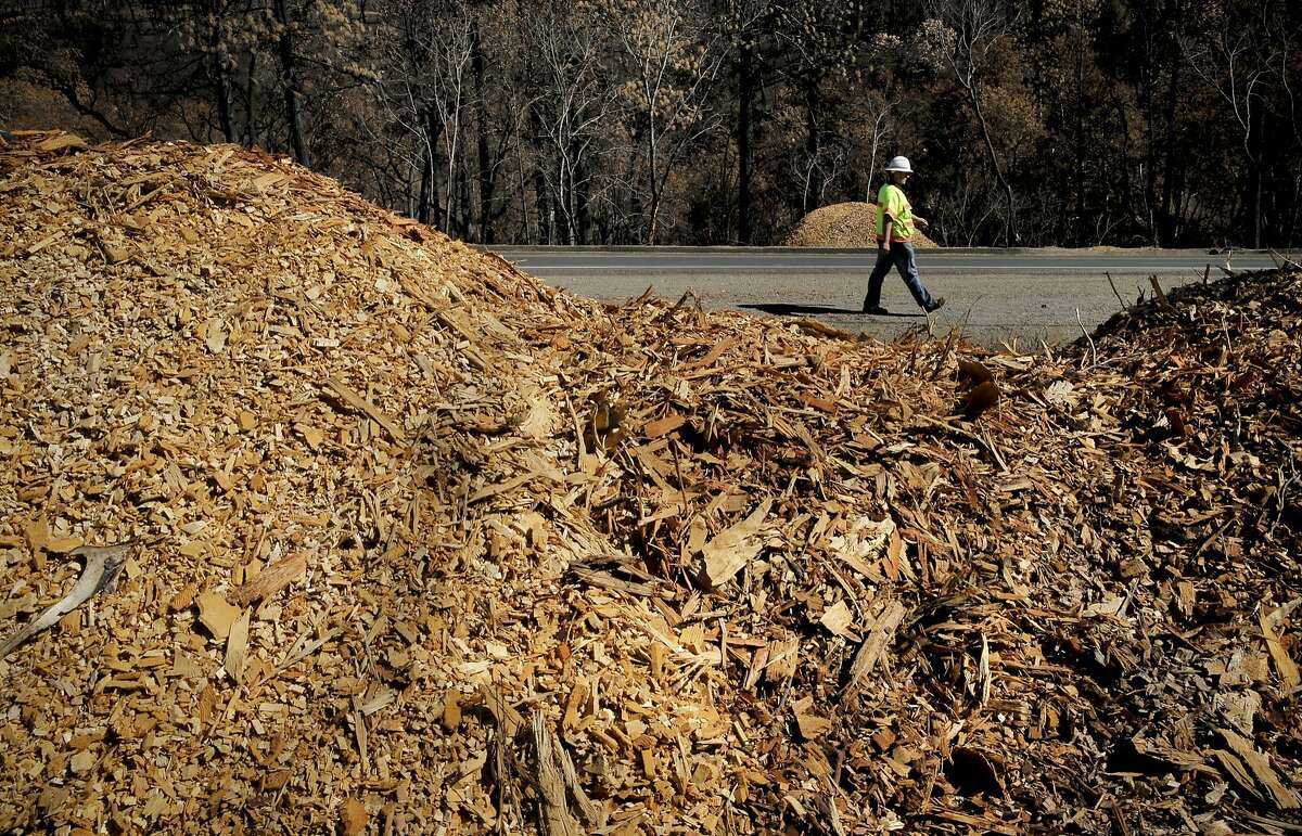 Caltrans engineer Garrett Griffth walks past piles of wood chips cut from downed burned trees, on Tues. Oct. 20, 2015, that will be used for erosion control on the burned hillsides along highway 175, in preparation of possible heavy rains this winter after the Valley Fire swept through highway near Middletown, Calif.
