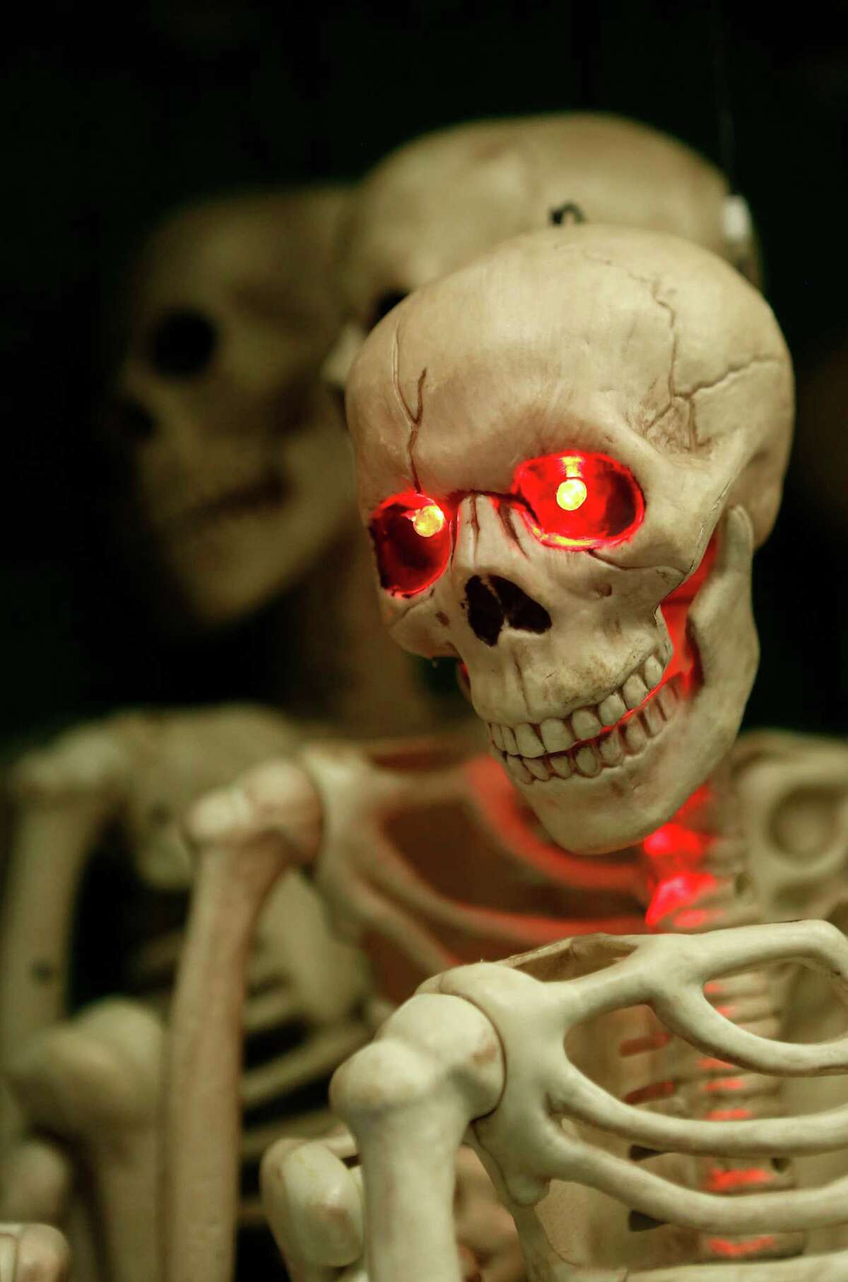 A skeleton's eyes light up at Party Boy, a costume and party supply store that contains everything from decorations to costume rentals to an onsite haunted house, Tuesday, Oct. 20, 2015, in Houston. ( Mark Mulligan / Houston Chronicle )