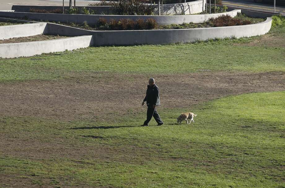 A man walks his dog across the baseball field at Glen Canyon Park in San Francisco, Calif. on Thursday, Oct. 22, 2015. Dog owners and parents are concerned about the apparent use of an herbicide known as glyphosate in the park. Photo: Paul Chinn, The Chronicle