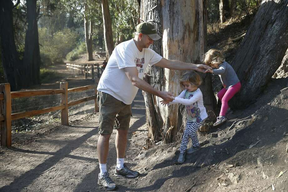H. Joseph Ehrmann helps his daughter Ruby (right) and her friend Mia Blumenberg (center) down from a tree while they walk on a trail leading to their pre-school at Glen Canyon Park in San Francisco, Calif. on Thursday, Oct. 22, 2015. Dog owners and parents are concerned about the apparent use of an herbicide known as glyphosate in the park. Photo: Paul Chinn, The Chronicle