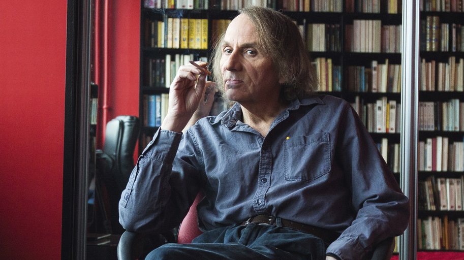 Image result for submission Michel Houellebecq.