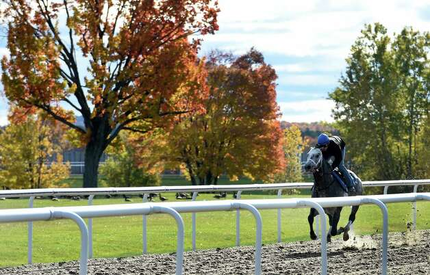 Breeders' Cup Classic entrant Frosted puts in his final tune up under the reins of exercise rider Rob Massey at the Darly Farm compound Friday morning Oct. 23, 2015 in Saratoga Springs, N.Y.    (Skip Dickstein/Times Union) Photo: SKIP DICKSTEIN