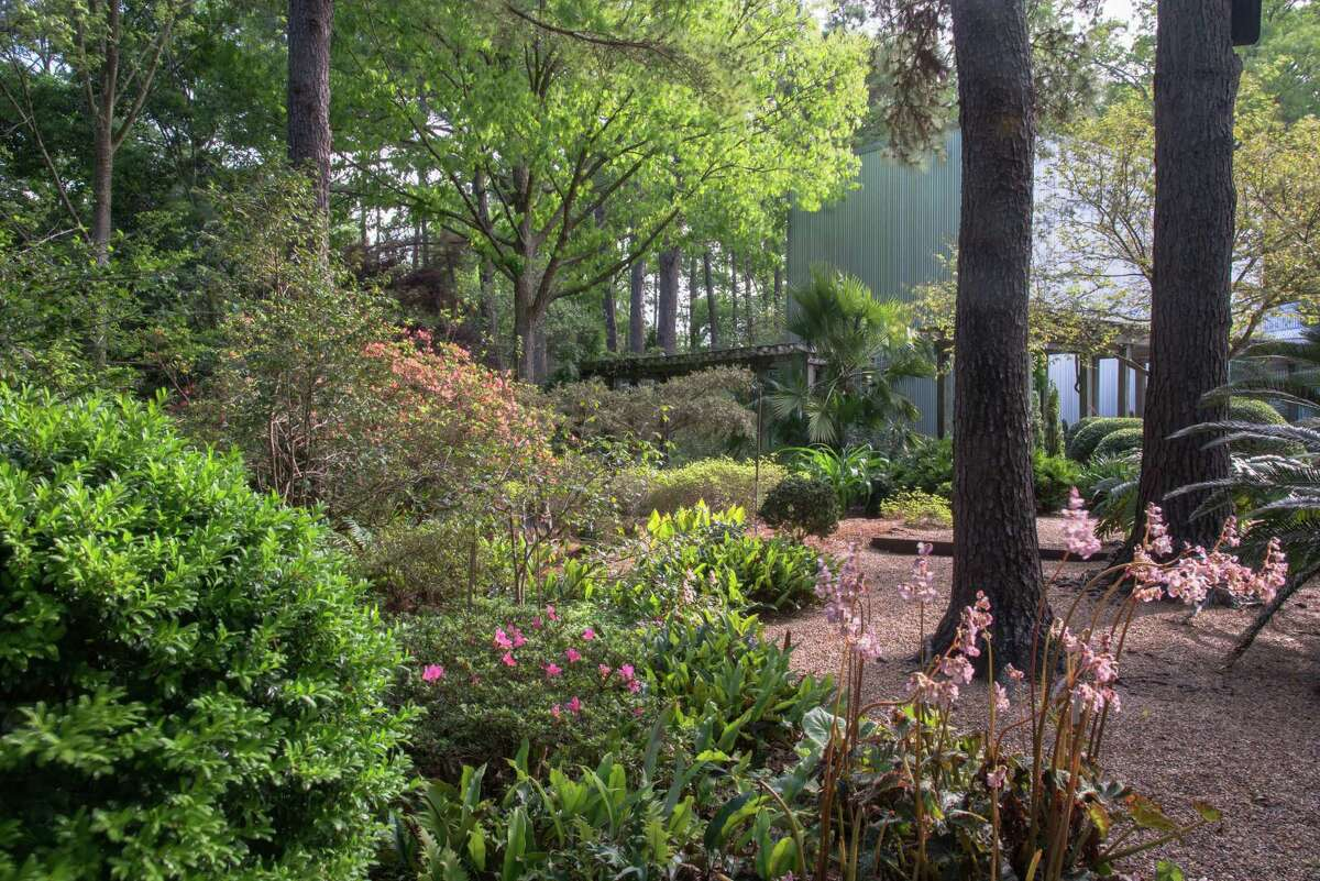 Peckerwood Garden. (For many, many more photos, scroll through the slideshow.)