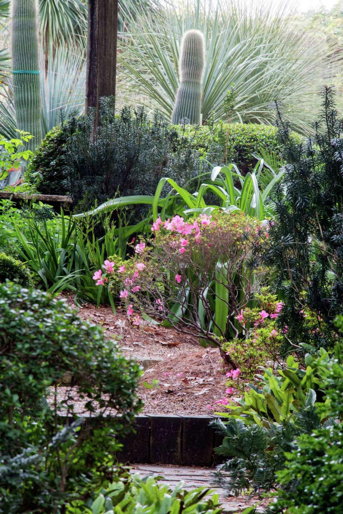 Peckerwood Garden.