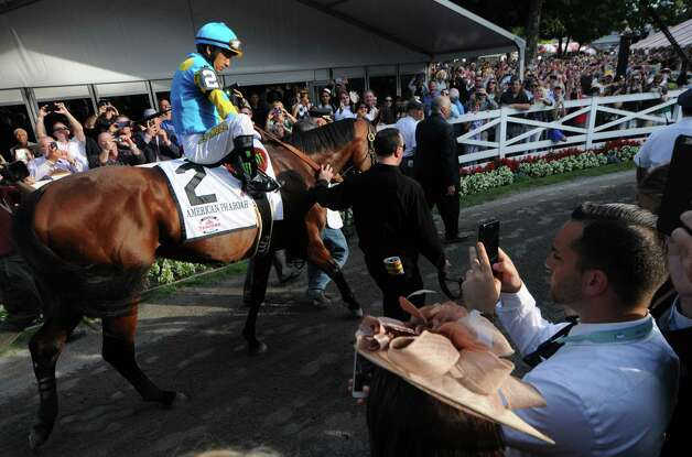 Victor Espinoza adjusts his stirrups while riding American Pharoah out of the paddock before the start of the Travers Stakes at Saratoga Race Course Saturday afternoon, Aug. 29, 2015, in Saratoga Springs, N.Y. Keen Ice with Javier Castellano was the winner. (Will Waldron,Times Union) Photo: Will Waldron