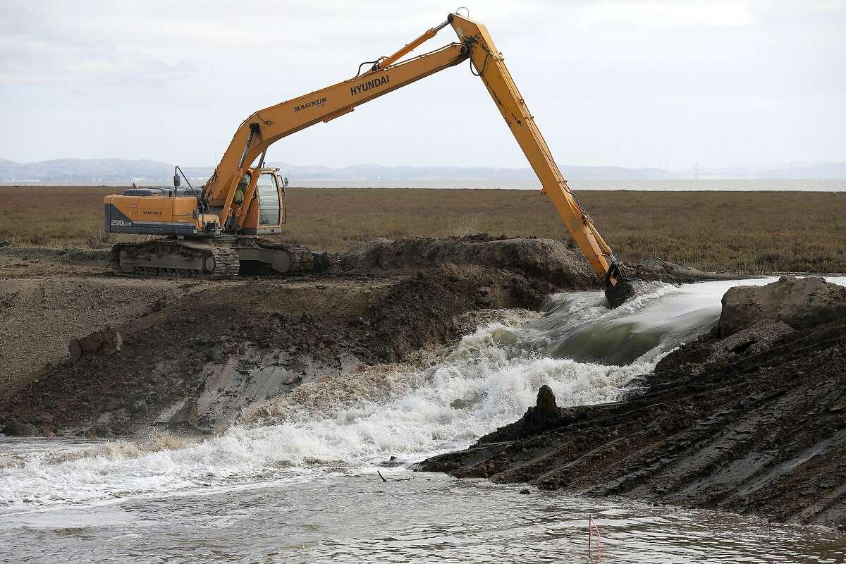 Crews breach a levee near Sonoma, California, on Sunday, Oct. 25, 2015.