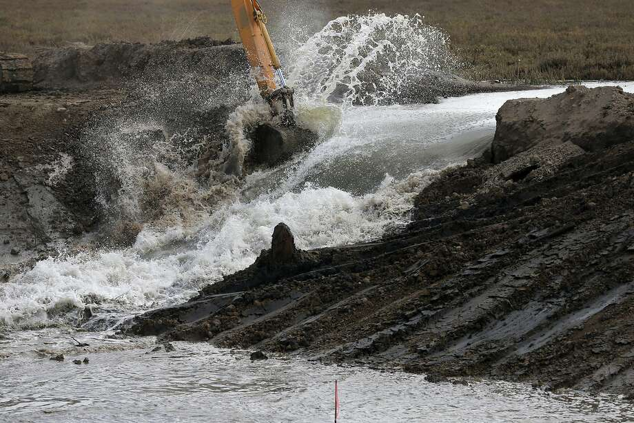 Water gushes through a levee in Sonoma County, assisted by a few scoops from a mechanical excavator. Photo: Connor Radnovich, The Chronicle