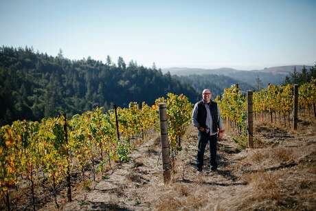 Carroll Kemp, the owner of Red Car Wine, in his Doc's Ranch vineyard in Occidental. Photo: Sarah Rice, Special To The Chronicle