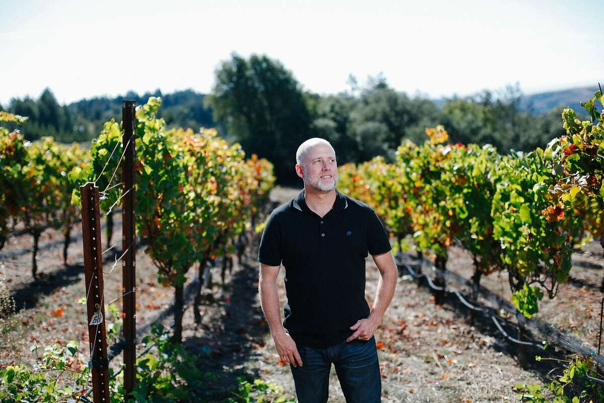 Ross Cobb at his vineyards in Occidental, Calif., on Wednesday, October 21, 2015.