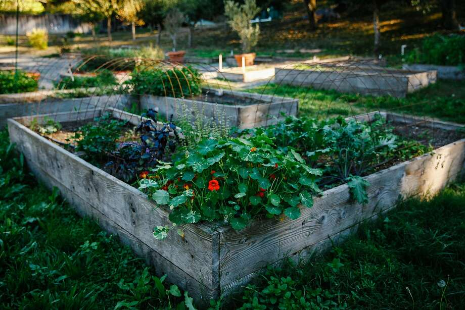 Applewood Inn's culinary garden. Photo: Sarah Rice, Special To The Chronicle