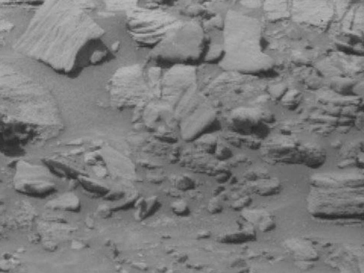 A bear on the surface of Mars? An object in the shape of a bear cub can be seen in a recent photo from Mars taken by a NASA rover. Can you see it?