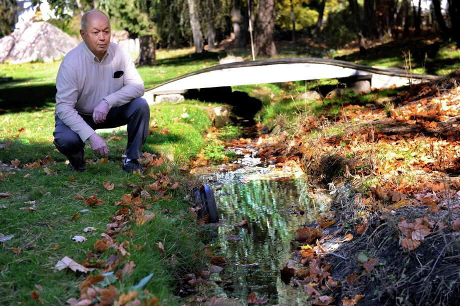 Jay Geib kneels near a drainage ditch that flows behind the home he shares with his companion Nora McGrath. Residents on Cawley Avenue in Bethel are urging the town to improve the drainage system in their neighborhood. Photo: Carol Kaliff / Hearst Connecticut Media / The News-Times