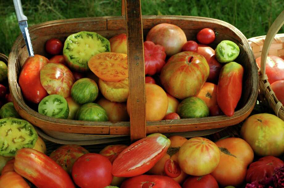 Learn to grown heirloom tomatoes and other vegetables in a class taught by Pam and Leah Gunter Saturday, Oct. 31, at Arbor Gate, 15635 FM 2920, Tomball. Photo: Jere Gettle / handout