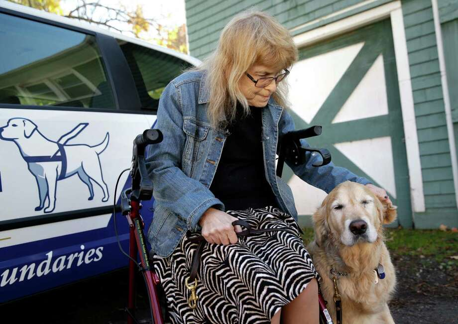Audrey Stone greets her guide dog, Figo, who was returning home for the first time in months after an accident that injured both of them in Brewster, N.Y., Monday, Oct. 26, 2015. Stone said her goal for recovery was to bring home the guide dog that jumped in front of the bus to save her. (AP Photo/Seth Wenig) ORG XMIT: NYSW104 Photo: Seth Wenig / AP