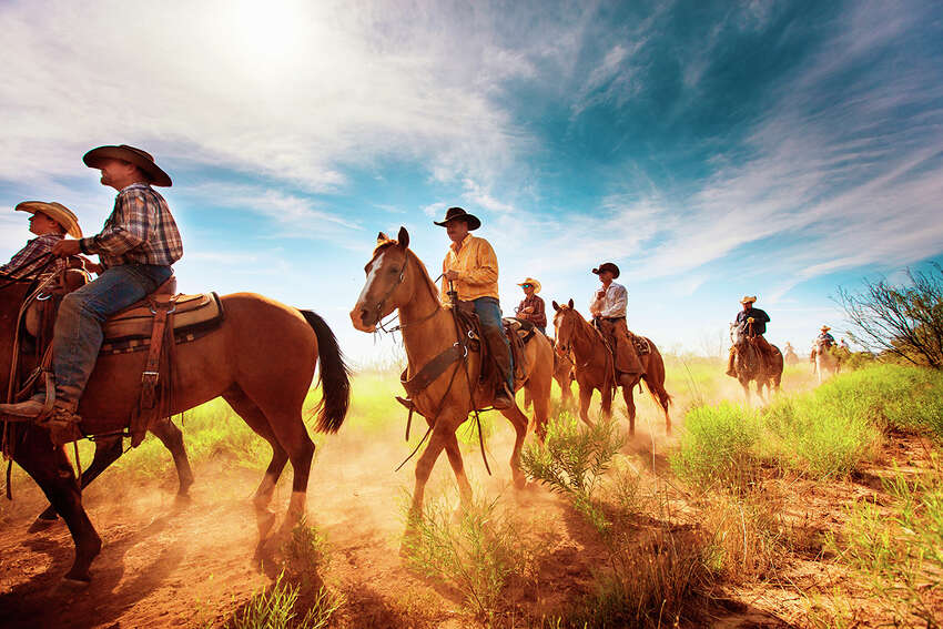 Cowboys ride out into a pasture to round up cattle on Waggoner Ranch.