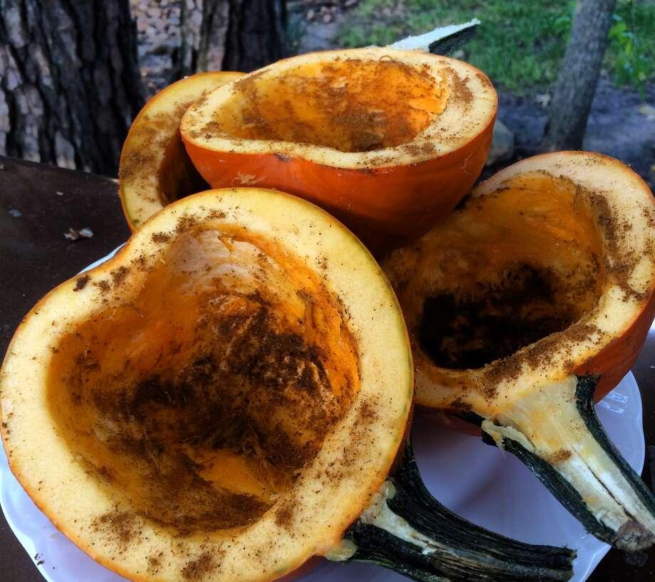 Sprinkle cleaned pumpkin halves with garam masala.