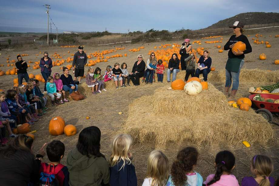 Donna Iles of Rodoni Farms speaks with school children before they pick pumpkins in Santa Cruz, Calif. on Tuesday, Oct. 27, 2015. Due to the drought and excessive heat pumpkins have been scarce. Photo: James Tensuan, Special To The Chronicle