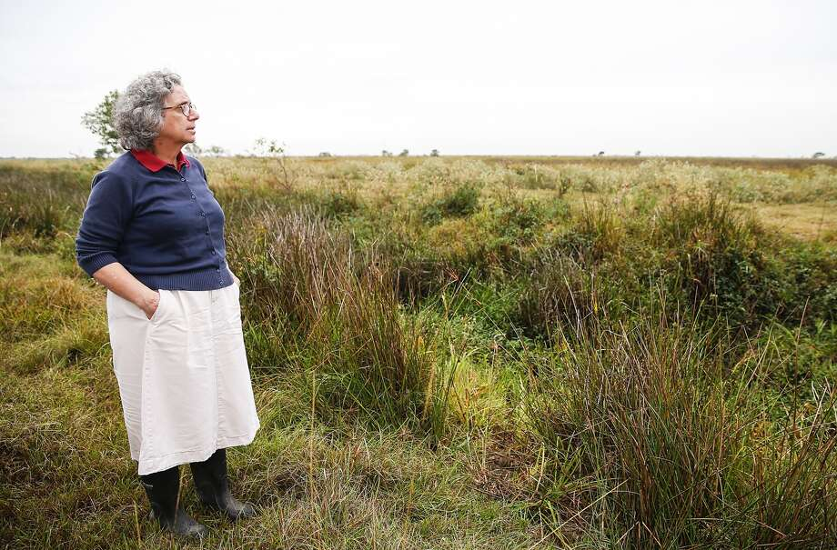 Katy Prairie Conservancy Executive Director Mary Anne Piacentini stands in front of a protected wetlands area that could be in danger due to plans to expand Texas 36 northward through the Katy Prairie.  Photo: Diana L. Porter, Freelance / © Diana L. Porter