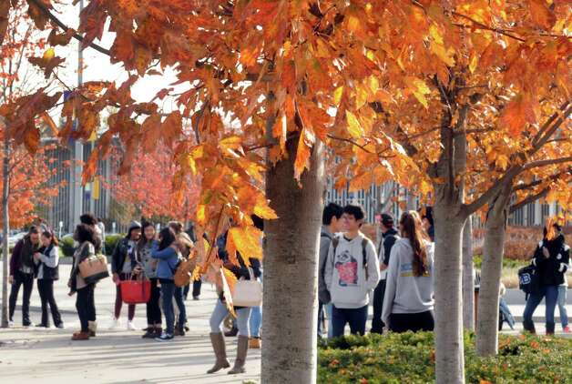 Students wait for the bus in Collins Circle amid the changing fall foliage at the University at Albany on Tuesday Oct. 27, 2015 in Albany, N.Y.  (Michael P. Farrell/Times Union) Photo: Michael P. Farrell