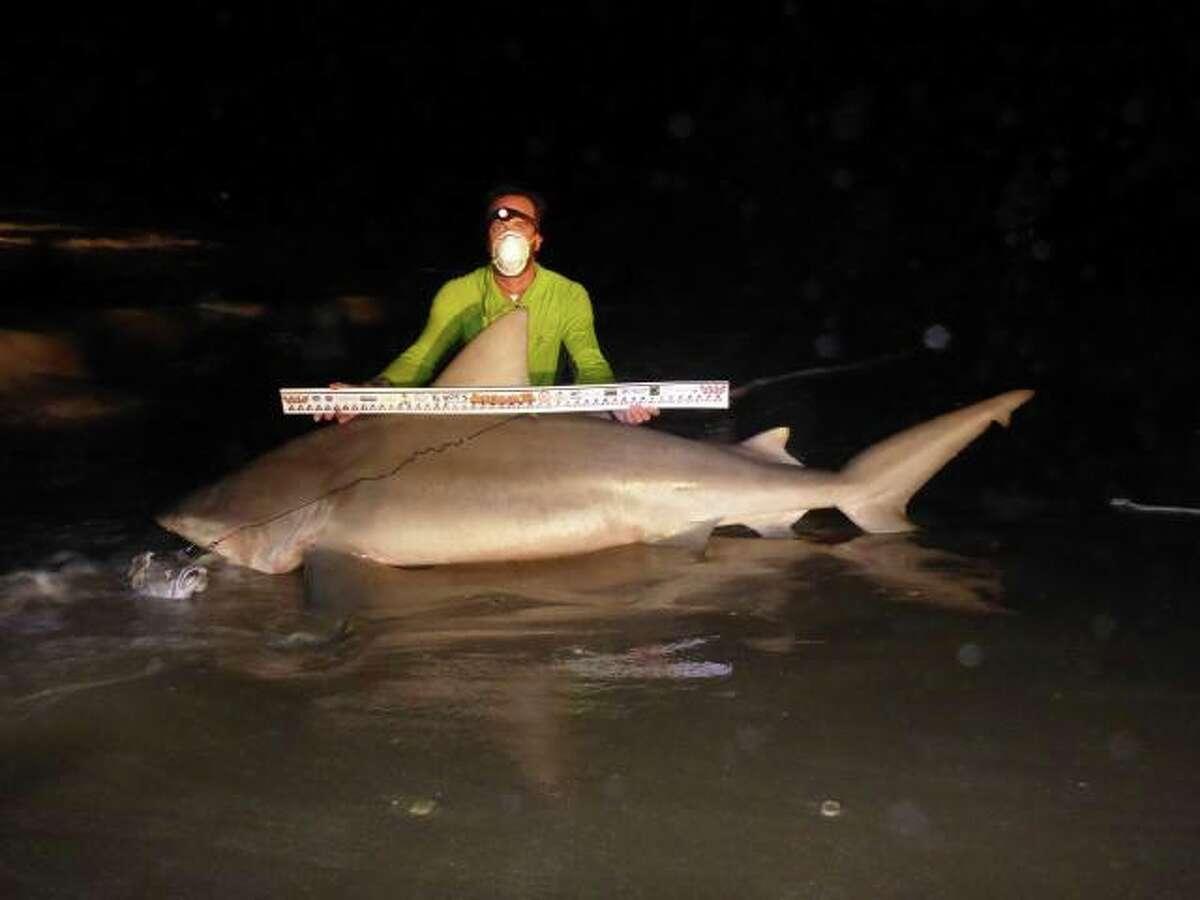 Duke Washmon, 36, hooked this massive 104-inch bull shark during the 2015 Sharkathon competition.