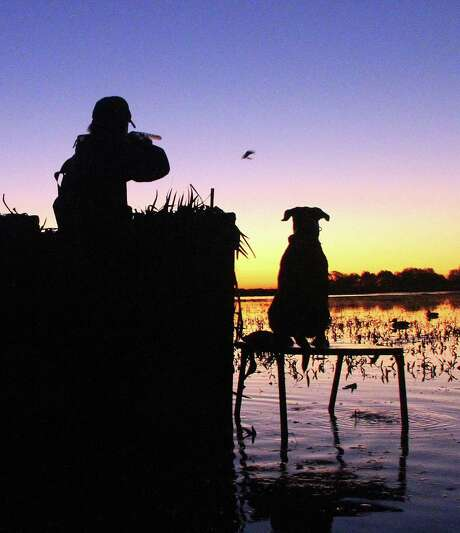 Excellent wetland habitat conditions across Texas, thanks to timely (if sometimes overabundant) rains, bode well for waterfowlers. Prospects appear outstanding for Saturday's opening of duck season in the state's South Zone. Photo: Picasa