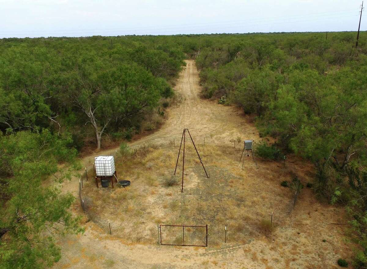 With live views of his feeders and watering area near this blind, Jim Raby of San Antonio can get an eye in the sky view of what is going on and what may need attend at his hunting lease during the preseason preparation period.
