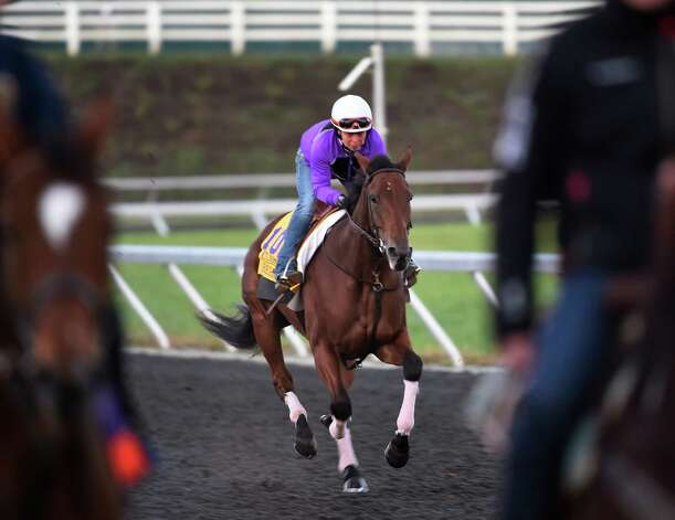 Beholder with rider Janeen Painter aboard goes out for exercise on the training track of Keeneland Race Course Thursday morning Oct. 29, 2015 in Lexington, KY  Later in the day Beholder was scratched from the Breeders' Cup Classic due to health issues.  (Skip Dickstein/Times Union) Photo: SKIP DICKSTEIN