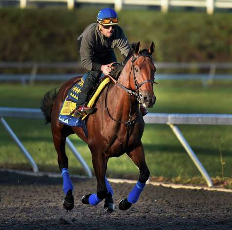 Breeders' Cup Classic entrant and Triple Crown winner American Pharoah goes out for exercise on the main track of Keeneland Race Course under the watchful eye of trainer Bob Baffert, second from right and owner Ahmed Zyat, right Thursday morning Oct. 29, 2015 in Lexington, KY.  (Skip Dickstein/Times Union) Photo: SKIP DICKSTEIN