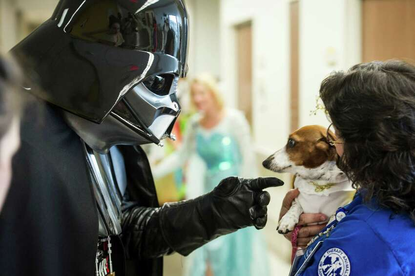 Darth Vader goes to pet a wary Bonnie, held by Melinda Red Cloud, during University Hospital's annual Pediatric Parade in San Antonio on Friday, October 30, 2015. University Hospital's annual Pediatric Parade includes current and former pediatric patients dressed in costumes and trick-or-treating through the hospital's Sky Tower.