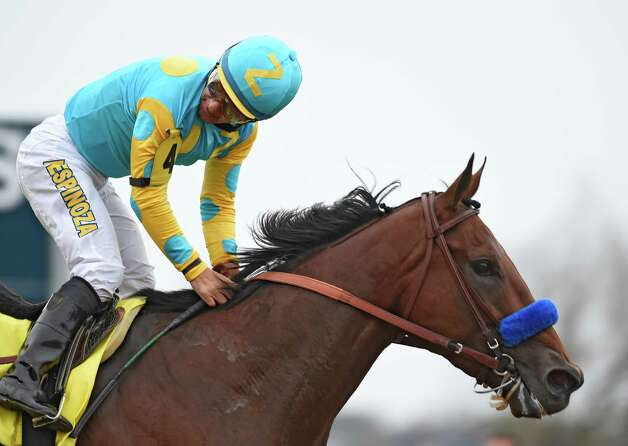 American Pharoah with Victor Espinoza in the saddle goes looks back for the competition on the way to the win in  the Breeders' Cup Classic in track record time Oct. 31, 2015 at Keeneland Race Track in Lexington, KY  (Skip Dickstein/Times Union) Photo: SKIP DICKSTEIN