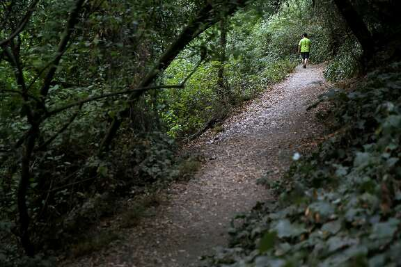 Stan Dodson walks on a trail in Dimond Canyon Park in Oakland, California, on Sunday, Nov. 1, 2015.
