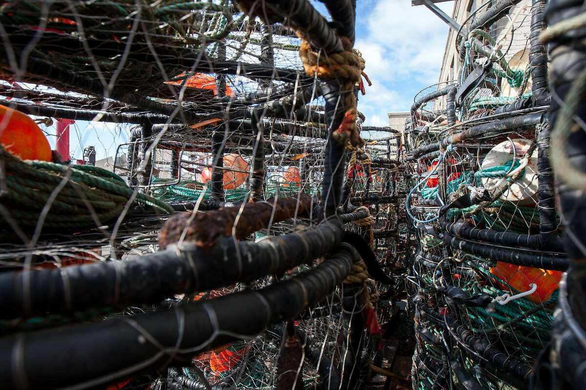 Crab pots are seen at Pier 45, Monday, Nov. 2, 2015, in San Francisco, Calif. A toxic algae bloom in the Pacific may delay the start of Northern California's Dungeness crab season, which is set to start this Saturday for recreational fishermen and a week later for the commercial season. State officials are currently testing crabs for the presence of domoic acid, a neurotoxin that can cause memory loss, seizures and even death when consumed by humans.