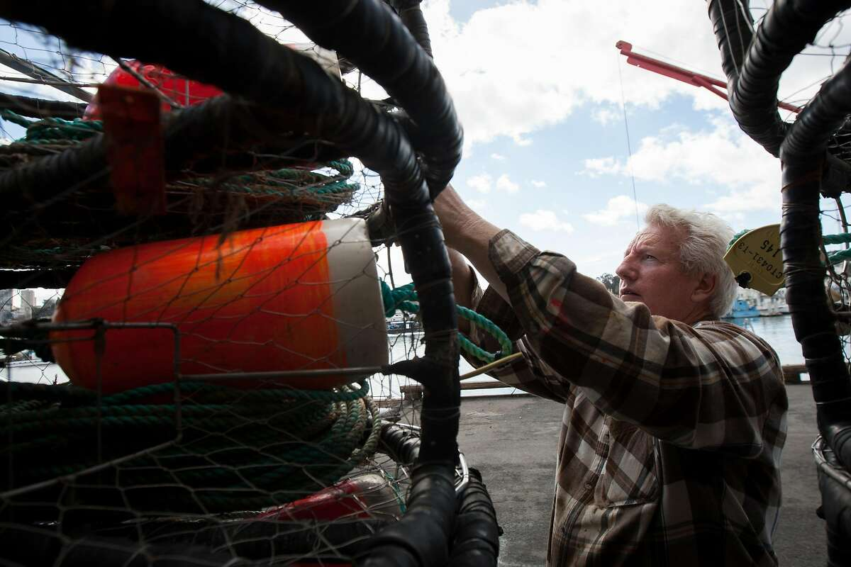 Mike Mitchell prepares his crab pots at Pier 45, Monday, Nov. 2, 2015, in San Francisco, Calif. Mitchell is the owner of the fishing vessel Linda Noelle. It will be his 45th year fishing for crabs. Mitchell said he would rather take a financial hit this season, instead of selling potentially harmful crabs. A toxic algae bloom in the Pacific may delay the start of Northern CaliforniaÂ's Dungeness crab season, which is set to start this Saturday for recreational fishermen and a week later for the commercial season. State officials are currently testing crabs for the presence of domoic acid, a neurotoxin that can cause memory loss, seizures and even death when consumed by humans.